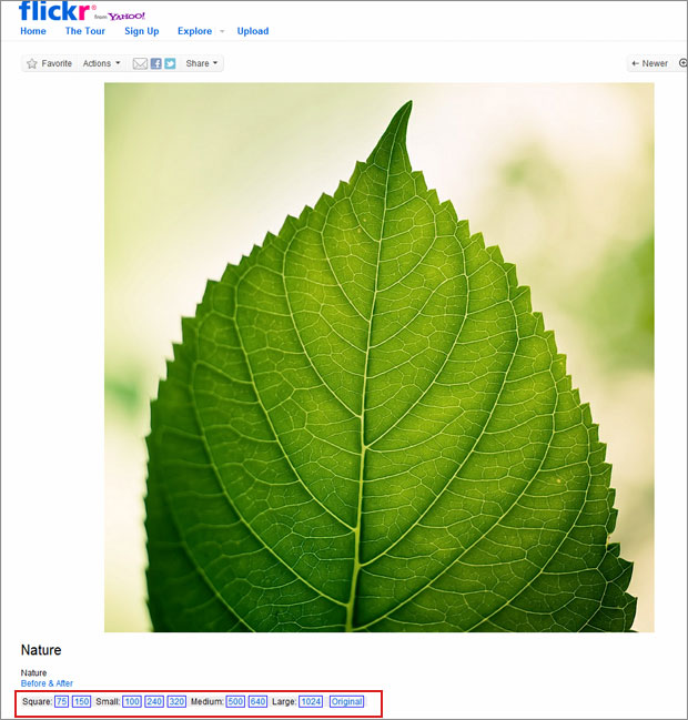 flickr resolution