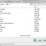 Backup browser